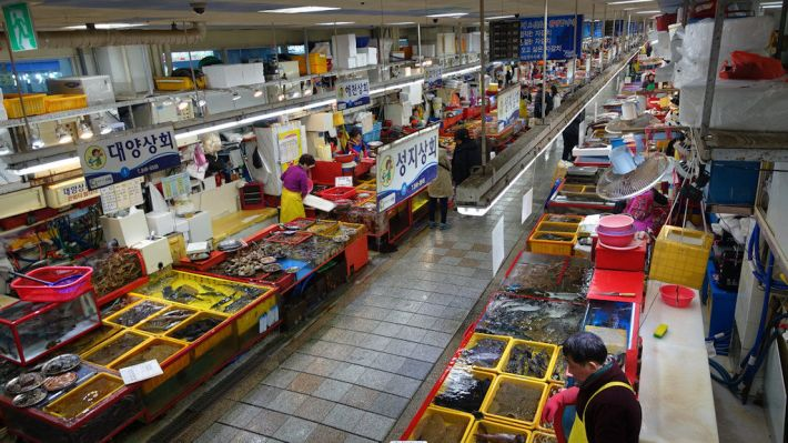 Busan Fish Market