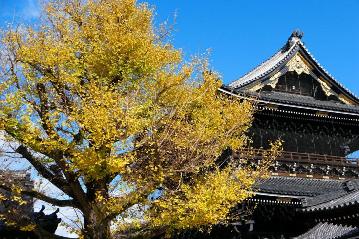 Gate to Higashihonganji Temple-Kyoto