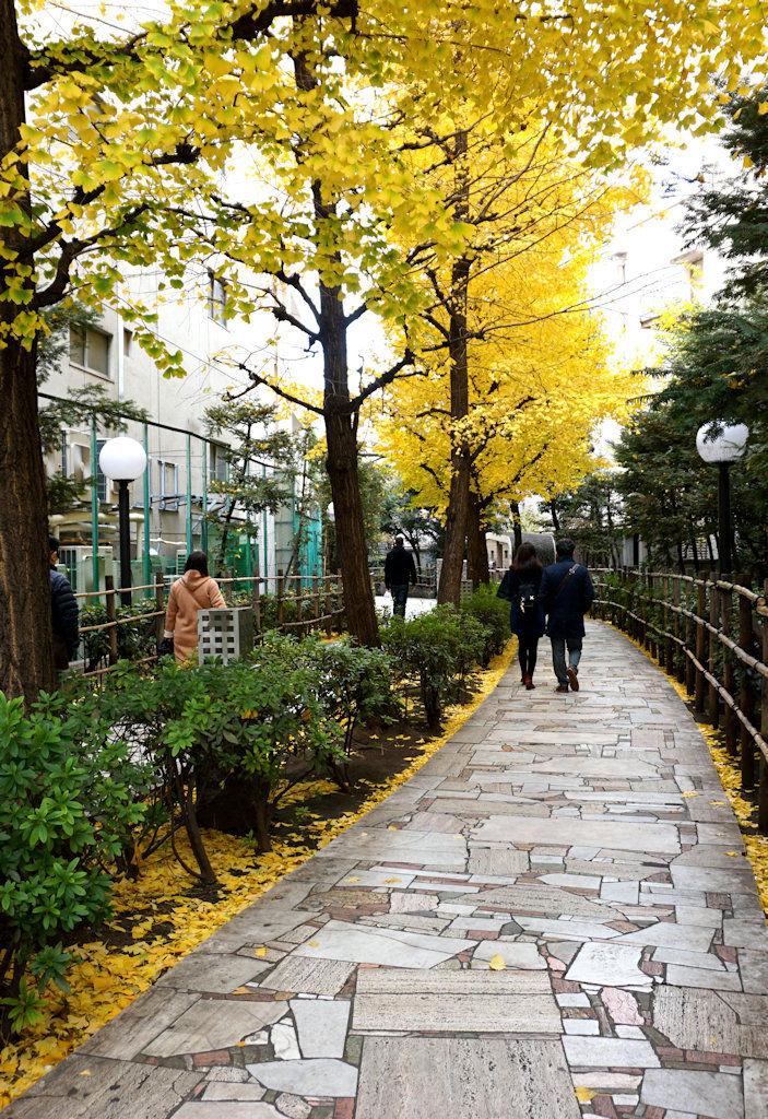 Tokyo Walkway